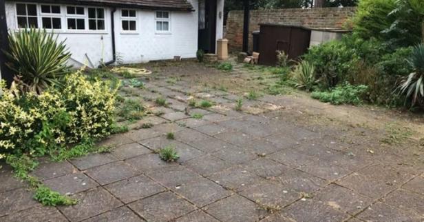 weeds in patio